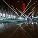 Malaysia International Airport by Vivek Bakshi