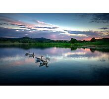 Sunset Ducks Photographic Print