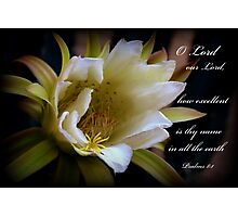Lord Our Lord Photographic Print