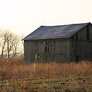 Seneca Barn by Geno Rugh