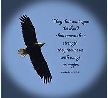 Winds as Eagles Photographic Print
