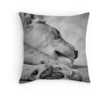 The Lion's Paw Throw Pillow