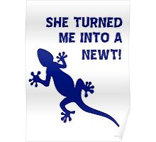 She Turned Me Into A Newt! T Shirts, Stickers and Other Gifts, Monty Python's Poster