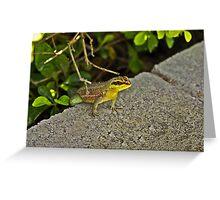 Perched Lizard Greeting Card