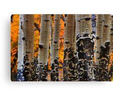 Autumn Textures Canvas Print