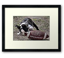 Its Puppy Football Time Framed Print