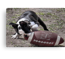 Its Puppy Football Time Canvas Print