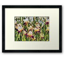 Iris - Mélodie d'iris Framed Print