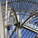 Glass House Roof 2 by Caoimhe Mc Carthy