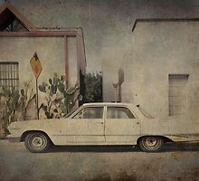 Barrio Viejo by Steve Silverman