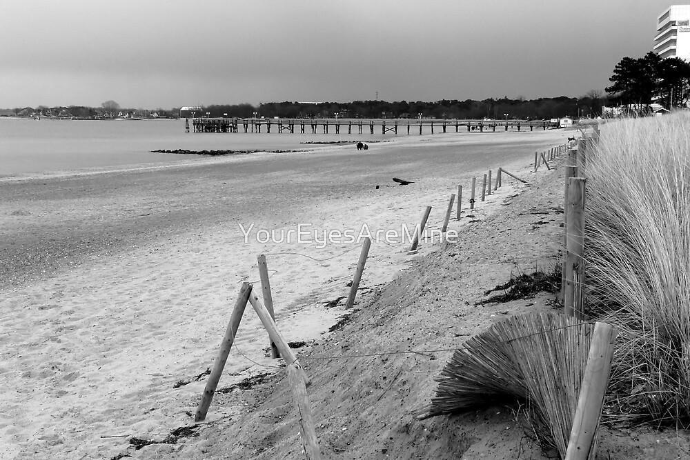 Coast by OLIVER W