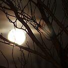 Full Moon by Caoimhe Mc Carthy