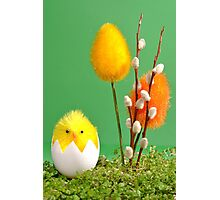 Easter Photographic Print