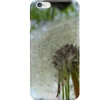 Dandelion Puff iPhone Case/Skin