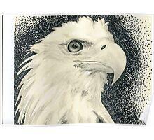 Eagle I Poster