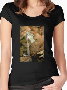 Indian Pipe Wildflower and Fungus Gnat - Monotropa uniflora Women's Fitted Scoop T-Shirt