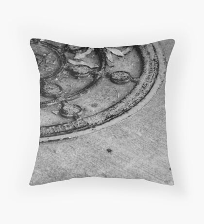 Who'd a thunk? A water hole Throw Pillow