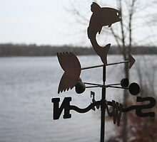 Weather vane. 4 Power points. rule of thirds, example#3 by philc1