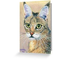 A Pensive Feline Greeting Card