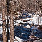 Icey Stream by Mark David Barrington