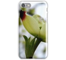 Dogwood Bloom - 4   ^ iPhone Case/Skin