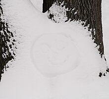 Smiling face on the snow, High Park, Toronto by alopezc72