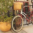 Riverside City Bike by Larry3