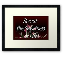 Savour the Sweetness of Life! Framed Print