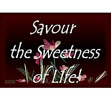 Savour the Sweetness of Life! Photographic Print