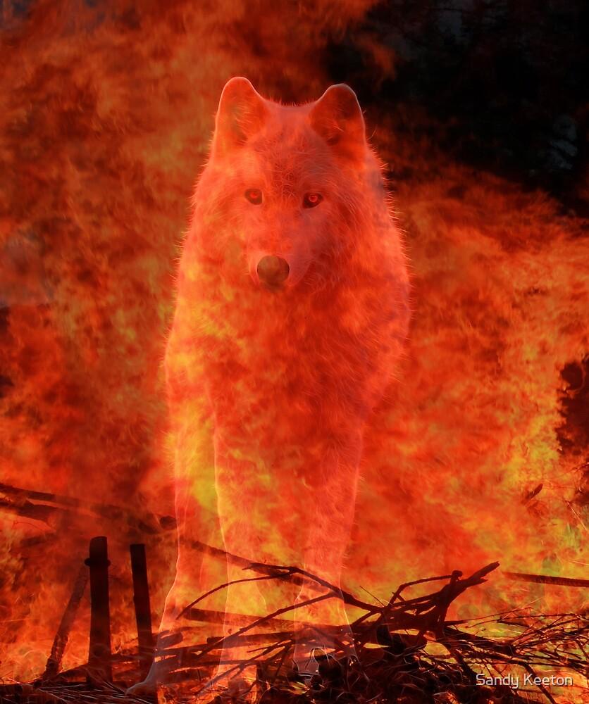 Fire Spirit by Sandy Keeton