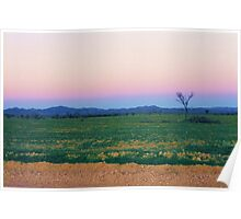 Dusk Hues over the Flinders Ranges Poster