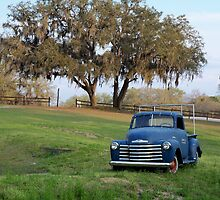 Old Chevy Country Pickup Truck in Mount Dora, Florida by Rick Short