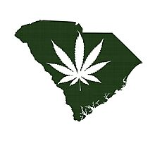 Marijuana Leaf South Carolina Photographic Print