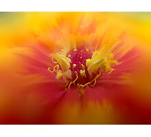 Bared Soul & Open Arms Photographic Print