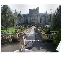 Hatley Castle, North Side Poster