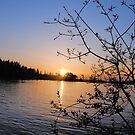 Halsey Sunset by NancyC