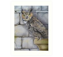Great Horned Owl - Castle dweller Art Print