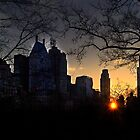 Central Park sunset by Eros Fiacconi (Sooboy)