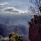 Long view from Civita Bagnoreggio by al holliday