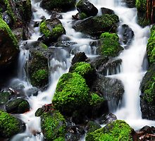 Waterfall by Jennifer Hulbert-Hortman
