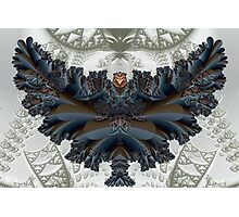 Imperial Eagle Photographic Print
