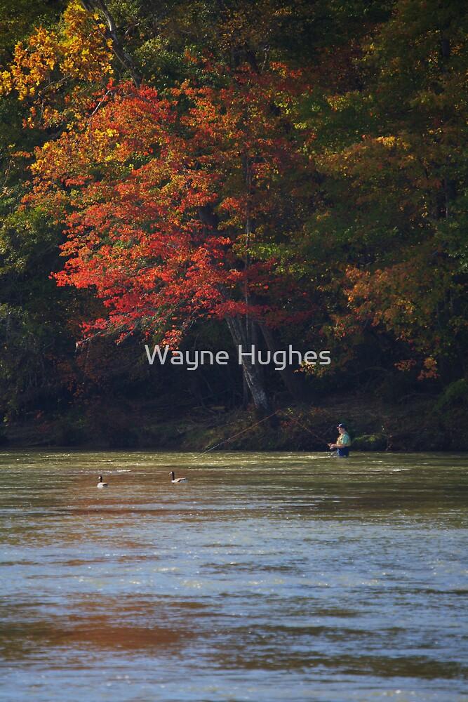 FISHING UNDER AUTUMN LEAVES by Wayne Hughes