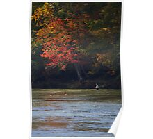 FISHING UNDER AUTUMN LEAVES Poster