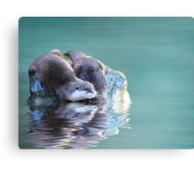 Diving in Canvas Print