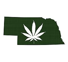 Marijuana Leaf Nebraska Photographic Print