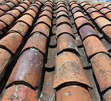 Old Tiled Roof by mgeritz
