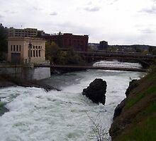 a river runs through it by Brady Sonnenberg