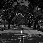 Violet Road by ckimages