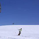 Snow Kites by Gene Praag