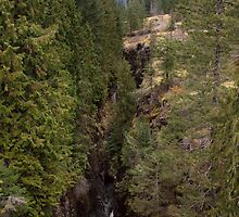 Box Canyon, Cowlitz River, Mount Rainier National Park, Washingt by Stacey Lynn Payne